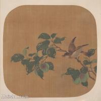 【印刷级】GH6080476古画花卉鲜花鸟古代-黄鹂枝头小品图片-34M-3508X3479