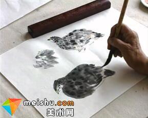 走进名家孙其峰-教你画鹌鹑5