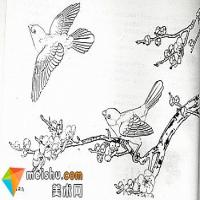 中国画用笔--线描1
