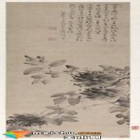 徐渭水墨牡丹图轴欣赏